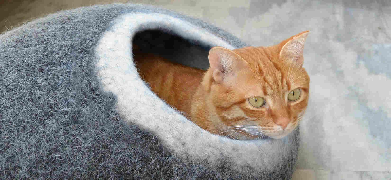 Wooppers γατόσπιτο με γάτα