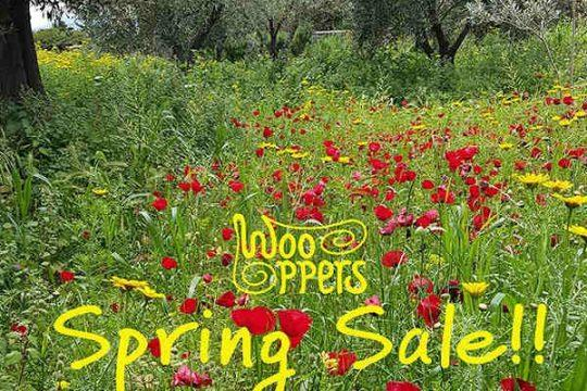 wooppers slippers on sale 15-30 May 2019